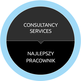 vector-synergy-consultancy-consultancy-services-najlepszy-pracownik