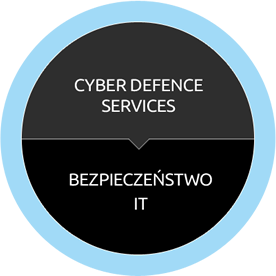 vector-synergy-consultancy-cyber-defence-services-bezpieczenstwo-it